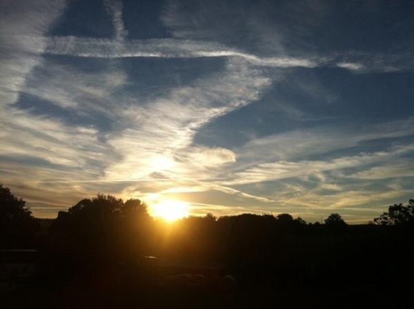 L'oiseau dans le ciel au lever du soleil de la Convergence harmonique